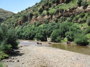 Lesotho- Pony Trekking Tour Packages